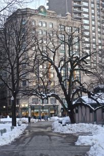 boston downtown crossing march 5 2019 snow boston common curvy tree