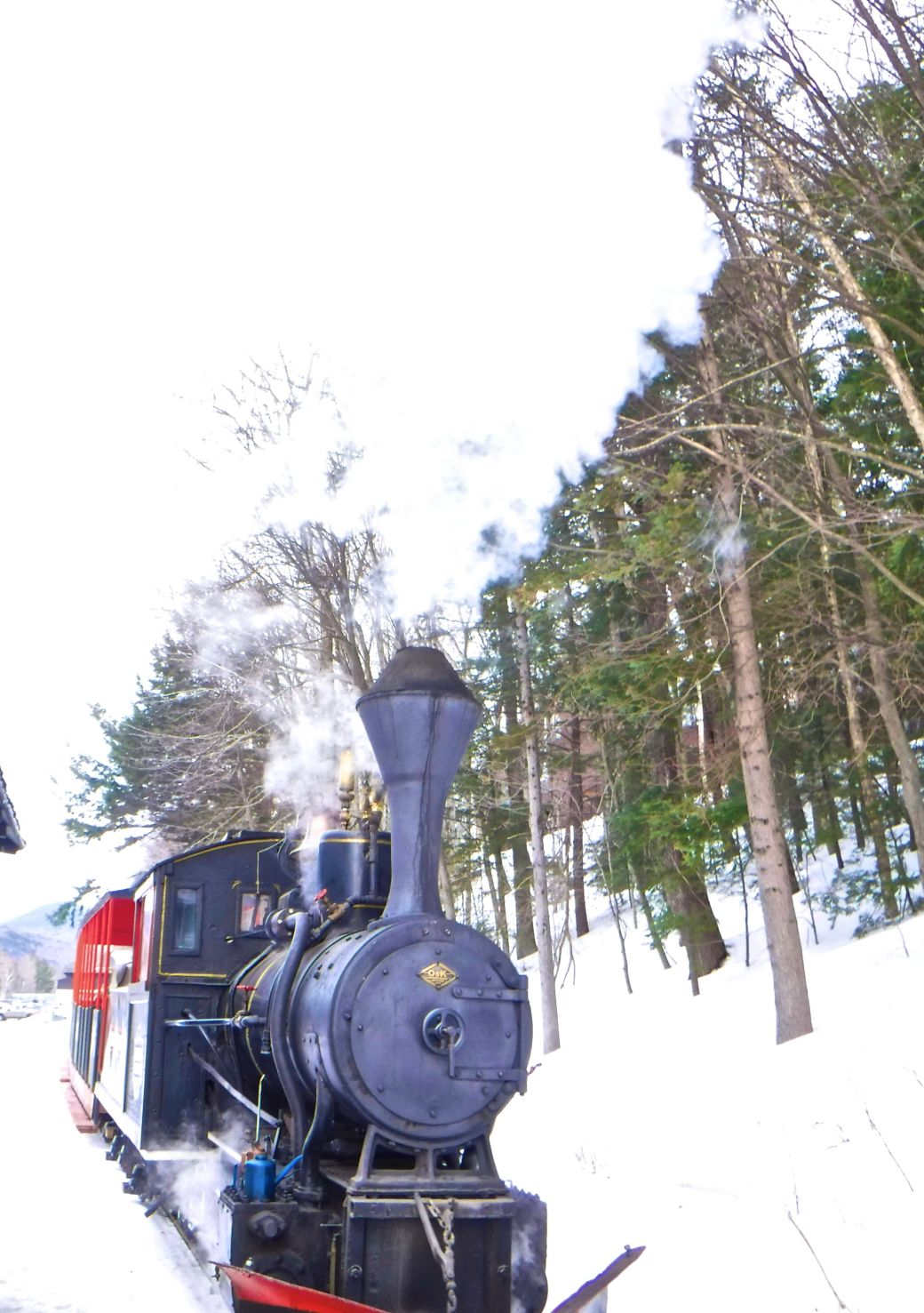 new hampshire loon ski resort steam train 3