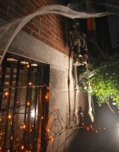 boston beacon hill halloween celebration 2019 skeleton spider web