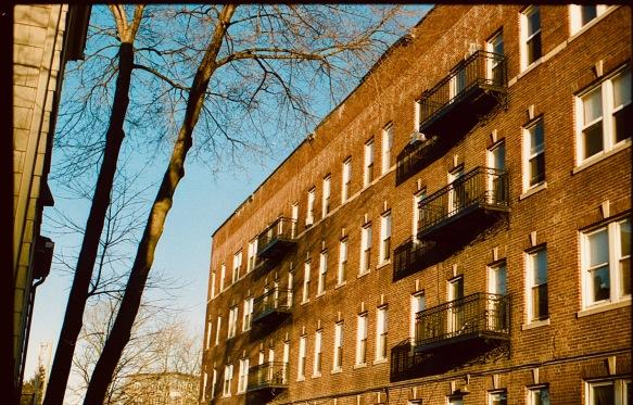 boston jamaica plain building sunset cinestill 50