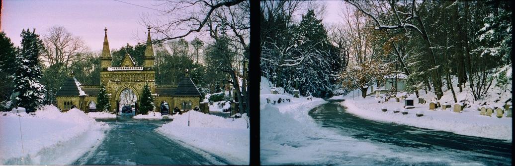 boston jamaica plain forrest hills cemetery 50 cinestill film snow