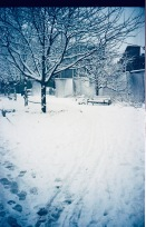 boston jamaica plain snow storm centre street portra 400