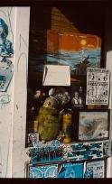 boston jamaica plain window display cinestill 50